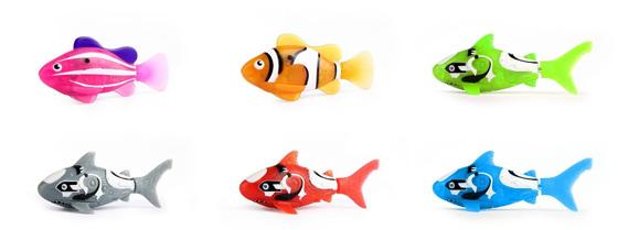 robofish zuru