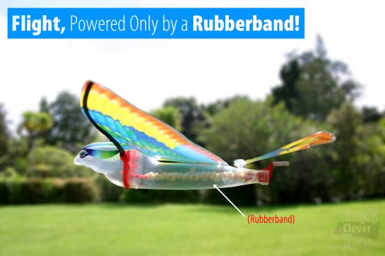 Tim Bird Powered by Rubberbands