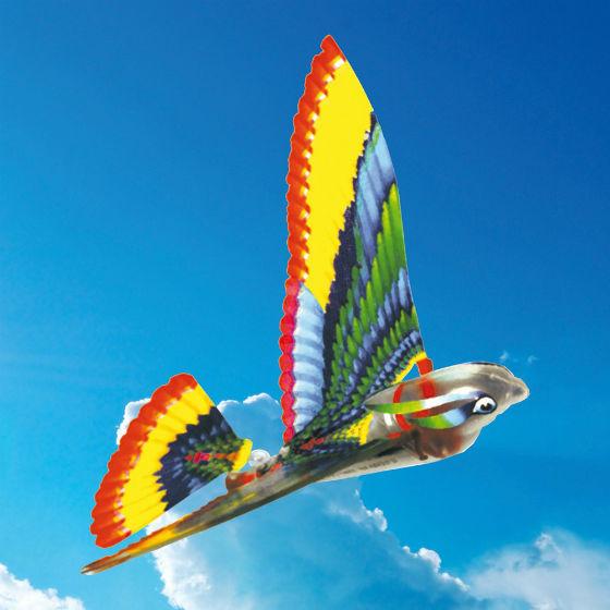 new_tim_bird