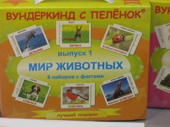 карточки животные