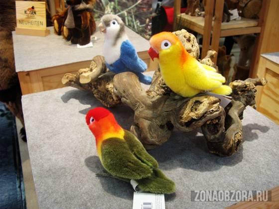 Kosen birds
