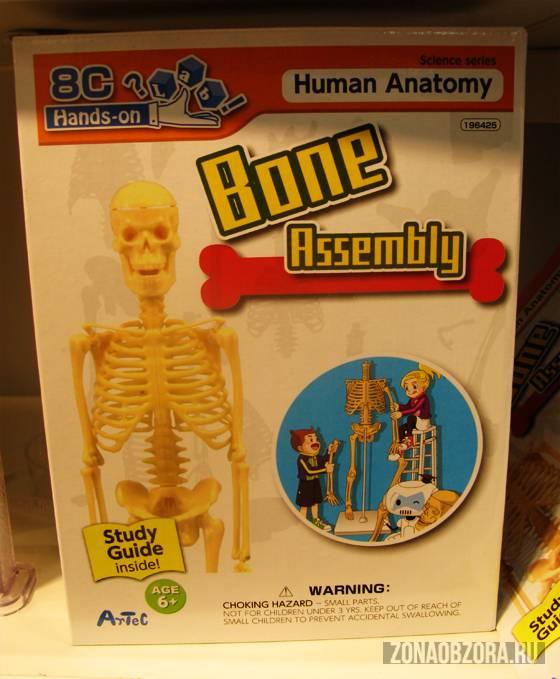 bone assembly