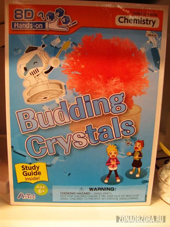 budding crystals