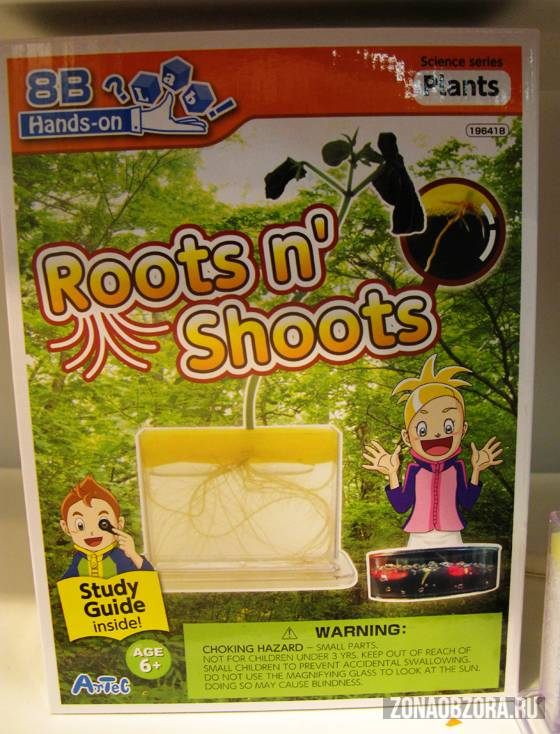 roots n shoots